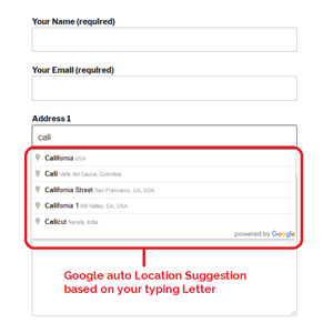 CF7 Google Auto Address Suggestion